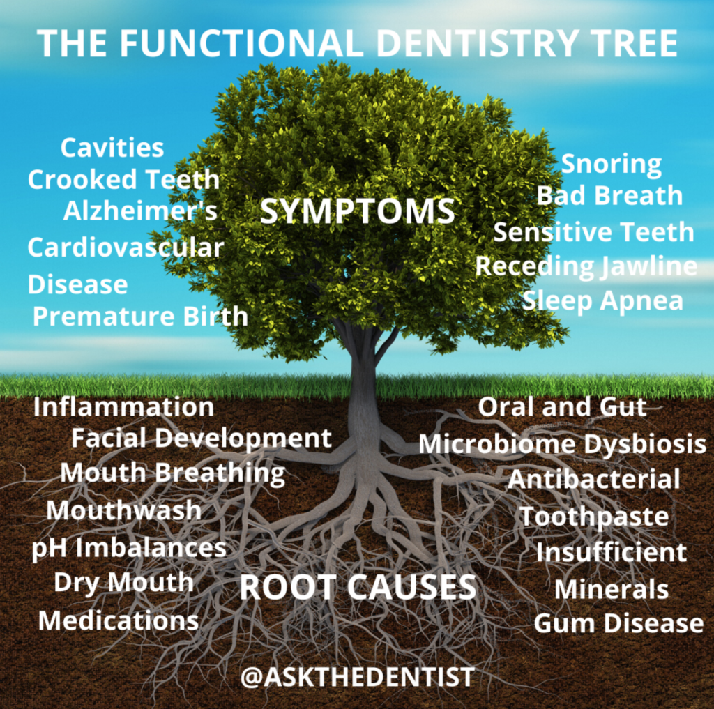 oral microbiome tree